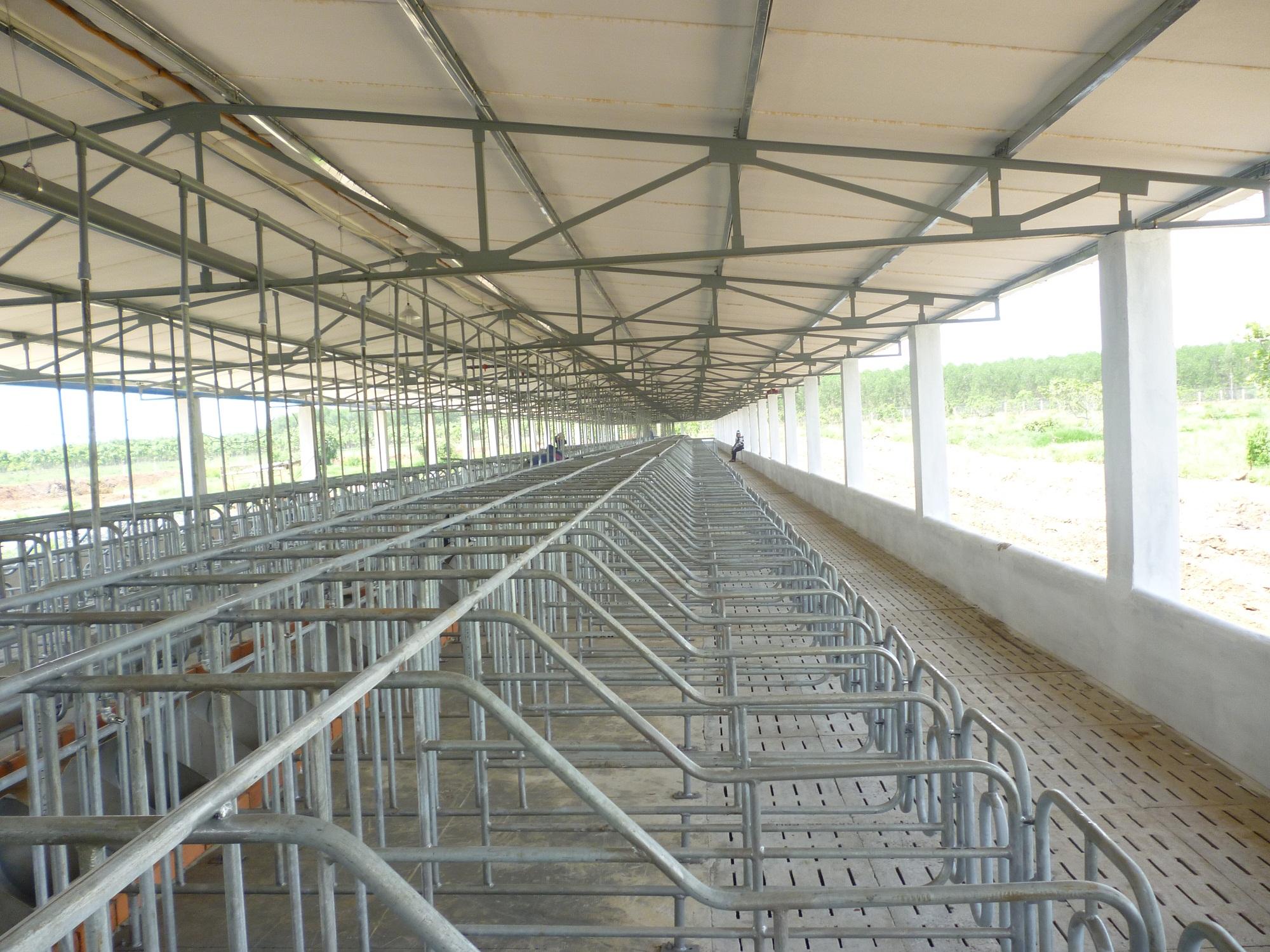 Thiết bị chăn nuôi CP an toàn hiệu quả cao