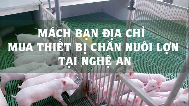 Mách bạn địa chỉ mua thiết bị chăn nuôi lợn tại Nghệ An