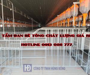 TAM-DAN-BE-TONG-CHAT-LUONG-3e7dwc86w7s54u1xzzptds.png