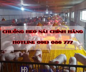 chuong-heo-nai-3e75j2k4ja2vdenvz6edxc.png
