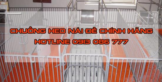chuong-heo-nao-de-chinh-hang-3e44dnc6nqrifp8v1pr56o.png