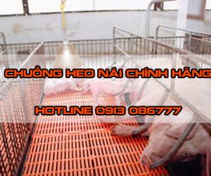 chuong-nai-de-3e2y8im3i148q0u1xi8kjk.png