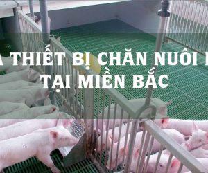 mau-thiet-bi-chan-nuoi-lơn-tai-mien-bac-3dz5h548w6jkmgzz8m34lc.jpg